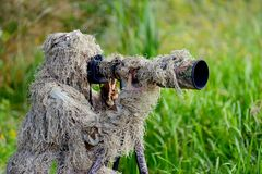 Camouflage wildlife photographer in the ghillie suit. Working in the wild Stock Photos