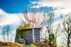 Camouflaged hunting cabin Royalty Free Stock Images