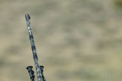 Camouflaged hunting rifle barrel gun tip. A close up of a camouflaged rifle barrel gun tip against a blurred landscape background Royalty Free Stock Image