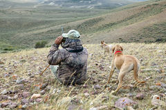 Camouflagejager en honden die dor landschap aftasten stock fotografie
