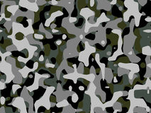 Camouflages. Stock Photo