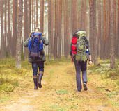 Camp, adventure, traveling and friendship concept. Man with a backpack and beard and his friend hiking in forest. Autumn color and hipster filter stock photos