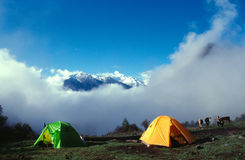Camp in clouds. Trekking camp in siguniang,china Royalty Free Stock Images