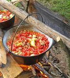 Camp cooking Royalty Free Stock Photography