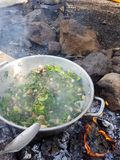 Camp cooking in the field on open fire - a big pan with vegtables and edible wild plants. With burning fire Royalty Free Stock Images