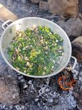 Camp cooking in the field on open fire - a big pan with vegtables and edible wild plants. With burning fire Royalty Free Stock Photography