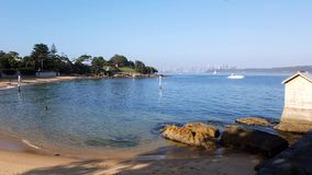 Camp Cove Bech, Sydney Harbour, Australia. A peaceful morning on the yellow sand beach at Camp Cove, Sydney harbour, NSW, Australia, with long early morning stock video footage