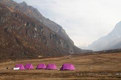 Camp dans l'itinéraire de voyage de goechala Images stock