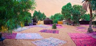 Camp de désert Photographie stock libre de droits