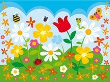 Camp de fleur Photographie stock