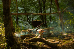 Camp de forêt Photos stock