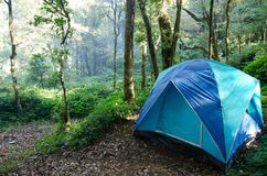 Camp in the deep jungle Stock Images