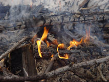 Camp Fire. In the Woods in Winter stock images