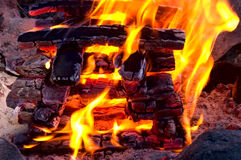 Camp Fire. Charred black pyramid shape kindlings burning with an intense yellow-orange flame Royalty Free Stock Photos