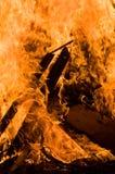 Camp fire. Raging wood bonfire burns bright orange Royalty Free Stock Photos
