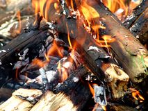 Camp fire. A closeup of a fire on a camping site Stock Photography