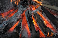 Camp fire. A photo of a camp fire (useful as background Stock Photography
