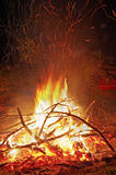 Camp fire Royalty Free Stock Photo