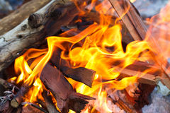 Camp fire. A close up of a camp fire showing the wood and flames Stock Image