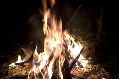 Camp fire. During hot sumer time Royalty Free Stock Images