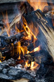 Camp fire. Logs - camping - abstract Stock Photos