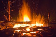 Camp-fire Stock Photography