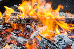 Free Camp Fire Stock Photo - 37102430