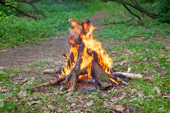 Free Camp Fire Royalty Free Stock Photography - 40362437