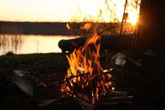 Camp-Fire Royalty Free Stock Image