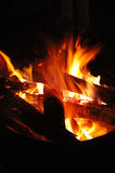 Camp fire. Burning camp fire in red Royalty Free Stock Photo