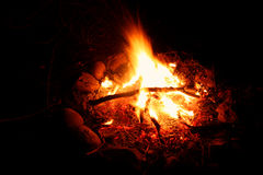 Camp Fire Background Stock Images
