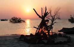 Camp fire on the beach Stock Photo