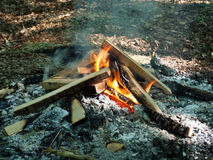 Camp fire burning Royalty Free Stock Image
