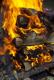 Camp fire burning in the night Royalty Free Stock Photography