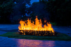 Camp fire burning wood Stock Photo