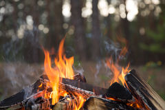Camp fire burns Stock Photos