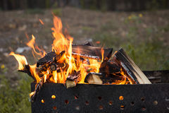 Camp fire burns Royalty Free Stock Images