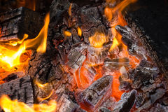 Camp fire Stock Image