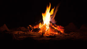 Camp fire. Evening camp fire burning red hot royalty free stock image