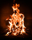 Camp fire in  the fireplace. Royalty Free Stock Images