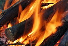 Camp fire with flaming logs Stock Photography