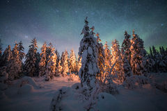 Camp fire in forest in Lapland Stock Photos