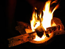 Camp Fire. Frontal detailled view of a camp fire Stock Photography