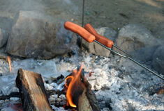 Camp Fire Hotdogs!. Cooking hotdogs over the camp fire Stock Image