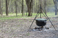 Camp fire with logs and pot Stock Photo