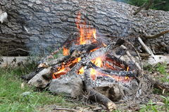 Camp fire. Near to Zaboj lake in Montenegro, Europe Stock Image