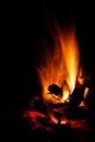 Camp fire Stock Photos