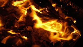 Camp Fire At Night. Closeup shot of camp fire burning in the dark stock video footage