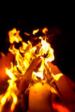 Camp fire in the night Royalty Free Stock Photos