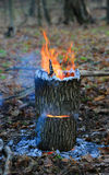Camp fire Stock Photos